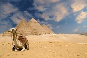 Wynajem Samochodów Kairo