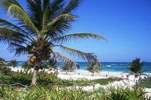Wynajem Samochodów Cancun